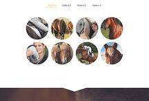 horse website design