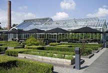 Gardening Love, Kitchen Garden to dream of / by The British Larder