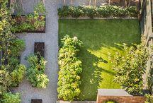 garden ogród