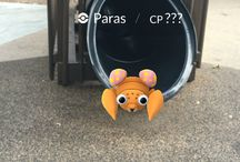 Pokemon Go at LEGOLAND California / When LEGOLAND California is filled with over 40 Pokestops for players to catch 'em all, Pokemon are spotted in crazy places all around the Park!