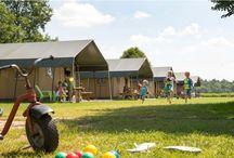 Nederland - Vakantiewoningen voor grote gezinnen / Geschikte vakantie accommodaties (vakantiehuis/appartement/bungalow/tent) in Nederland speciaal voor grote gezinnen met 3 of meer kinderen, waarbij de slaapplekken in de slaapkamers zijn en niet in de woonkamer.