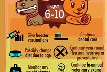 Fun Information