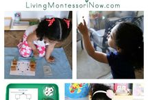 Life Cycle Studies / Learn about different life cycles here! Printables, hands on activities, Montessori activities, and more!   #handsonlearning #kidsactivities