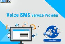 Voice SMS Service Provider