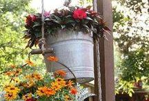 Container Gardening / Our favorite container gardening ideas!