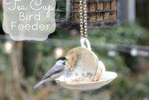 Teacup and saucer inspirations.
