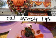Disney 2015 / by Tracy Allen