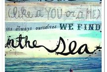 By the Sea / by Susie Carlson