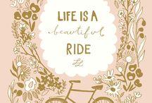 Biking Beauties