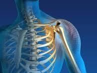 Shoulder Pain / Dr James Schofield, Pittsburgh North Hills chiropractor, discusses shoulder pain and how to obtain shoulder pain relief.  Schofield James Chiropractor 5000 McKnight Rd #208, Pittsburgh, PA 15237 (412) 367-3313