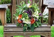 Wedding / by Lisa Butler