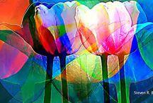 Pinturas cores
