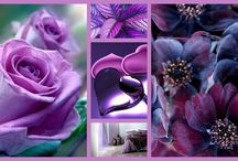 Love paars