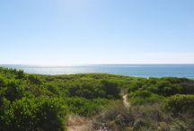 Beautiful East Coast Tasmania / On the East Coast of Tasmania we have a sweet little beach pad in Beaumaris! The Beaumaris Beach Pad is a great base to relax, unwind and explore the East Coast of Tasmania.