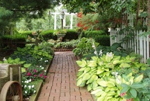 Garden / by Deborah Muir