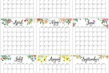 Diaře a kalendáře