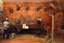 Rural Destinations / by Tennessee Daytripper