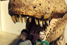 Ky's Dinosaurs!