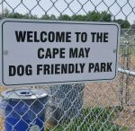 Pet Friendly Things to Do in Cape May NJ