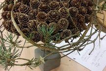 floristische Arbeiten
