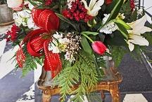 Christmas flowers / by Maggie Jones