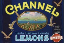 Authentic Citrus Labels