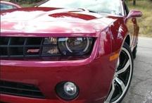 2010 Car Reviews
