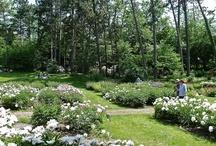 Michigan Gardens