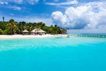 Kihaad / 20 dakikalık keyifli bir iç hat uçuşu seyahati ile ulaşacağınız bu ada gür bitki örtüsü, kusursuz lagün, çok samimi ve hizmetkar çalışanları ve ayrıca bol italyan konukları ile sizleri bekliyor. Ayrıca adanın UNESCO nun korunma listesinde bulunan Baa Atoll da bulunması dalış severler için not alınması gereken bir Maldiv otelidir... Tesis hakkında daha detaylı bilgi için; http://www.maldiveclub.com/maldivler-otelleri/kihaad