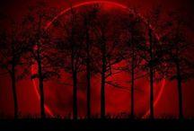 Moon ME Over!!!