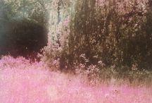 pink/cancer