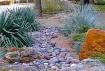 Xeriscaping / Xeriscape - gardens that require no supplemental irrigation