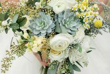 wedding bouquet / by Laura Wilcutt