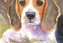 Beagles / My favourite dog!!!