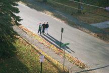 tv; stranger things / // November 6th 1983, Hopkins, Indiana.