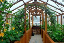 Greenhouse plans ♥