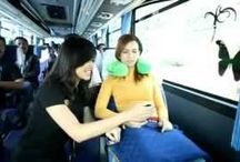 Video Youtube Bus Pariwisata / Video Terbaik Bus Pariwisata Bandung, Jakarta, dan Cirebon