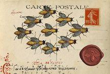 mail art / by tonnie verweij