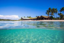 Fiji holiday / Getting ready for our holiday