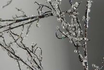 iced branches