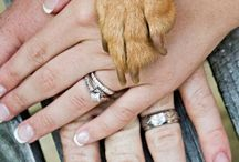 cute way to include you're pet in wedding pictures