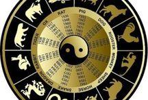 Feng Shui si astrologie chineza / Consultanța feng shui de specialitate pentru: Locuințe private (achiziționarea unei locuințe noi, construcția unei case noi, renovare sau extinderea unei locuințe); afaceri (sedii comerciale, hoteluri, magazine, cabinete, companii, birouri).