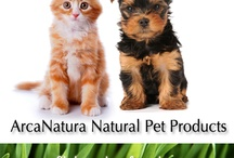 Love Your Pet Naturally / Check our ArcaNatura's exclusive new products for your dog or cat. Better for your pet, better for the planet.  / by ArcaNatura Natural Pet Products