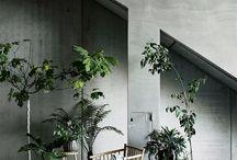 Hippe planten