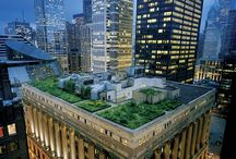 Gardens / Lush green gardens and planting.  From rooftop gardens to swimming pools