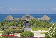 Zanzibar / dream  land