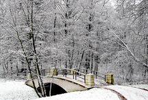 Winter / portrait of a season