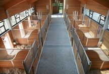 Dream Horse Stables