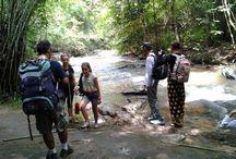 Chiang Mai Treks / Chiang Mai Treks