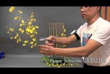 vídeos florales